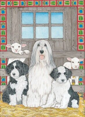 Bearded Collie Blank Note Card