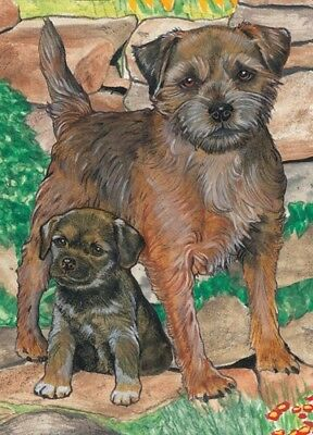 Border Terrier Blank Note Card