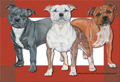 Staffordshire Bull Terrier Blank Note Cards Boxed