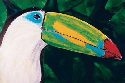Toucan Blank Note Cards Boxed