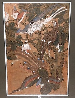 Antique Chinese Painting on silk, 9 Birds