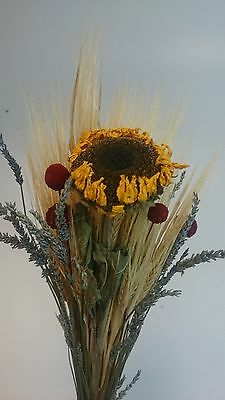 Beautiful Dried Lavender sunflowers barleys craspedia mixed  bundle