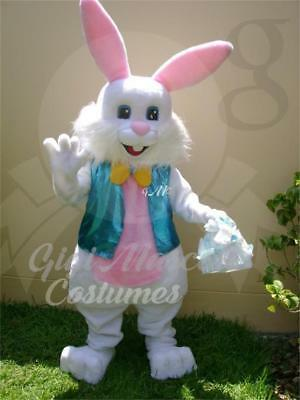 Professional Easter Bunny Mascot Costume And Many More Can Express