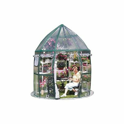 FlowerHouse 8' x 8' Conservatory Pop-Up Portable Greenhouse  by FlowerHouse