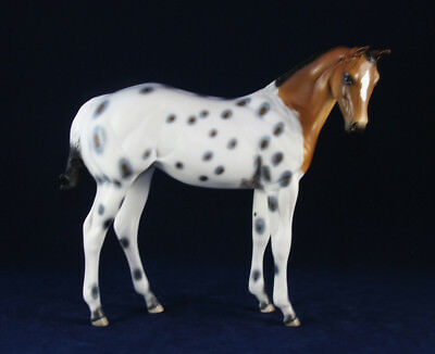 "Peter Stone ""SNOW FEATHER"" OOAK Chestnut Pinto Buckskin Appaloosa Weanling, 2016"