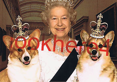QUEEN ELIZABETH II PHOTO 5X7 Welsh Corgi Dogs Royal Collectibles Free Shipping