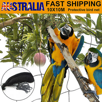 10Mx10M Commercial Fruit Tree Plant Knitted Anti Bird Netting Pest Net Mesh