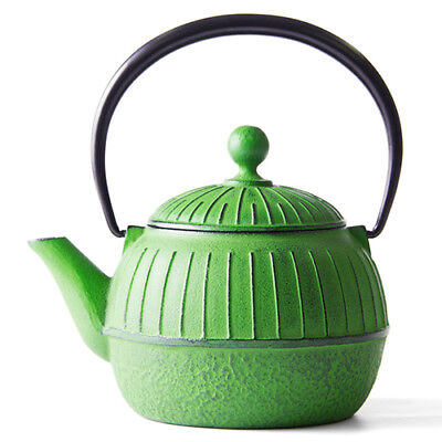 """""""OIGEN"""" ironware teapot / green made in iwate (japan) F/S"""