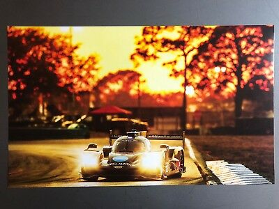 2018 Cadillac 12 Hours of Sebring Race Car Print, Picture, Poster RARE! Awesome