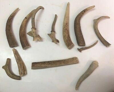 12pc Deer Antler Horn Stag Knife Handle for Crafting Craft Jewelry Making REDUCD