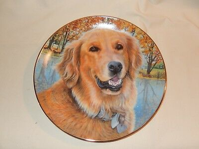 ALL SMILES, Golden Retriever Dog, Danbury Mint Plate