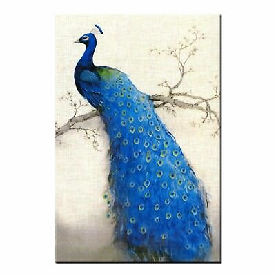 Animal Peacock Giclee Canvas Prints Wall Art Oil Painting Poster for Home Decor