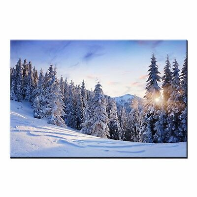 Modern Wall Art Landscape HD CANVAS PRINT Poster Snowy Forest Home Room Decor