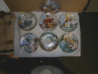 LOT(7) Royal Worcester Country Kittens  Cat Plate Set