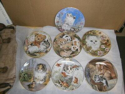 LOT(7) Royal Worcester Kitten Encounters  Cat Plate Set