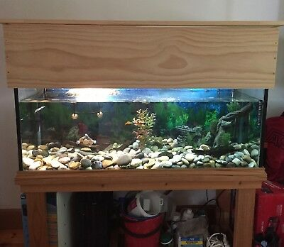 fish tank, stand & more