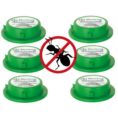 3 x MAXFORCE PROFESSIONAL Ant Killer Gel INDOOR/OUTDOOR Bait Station KILLS NEST