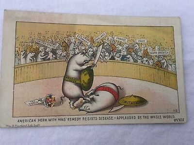 Antique Victorian Trade Card Haas Pork Pig Poultry Remedy Indianapolis Indiana