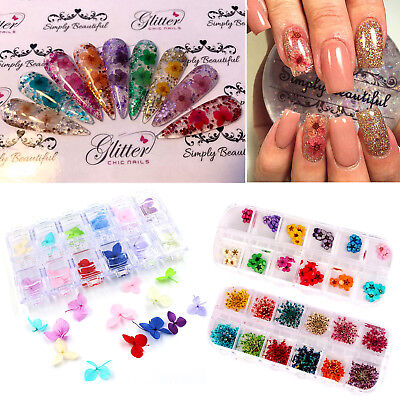 3D Colourful Real Dry Dried Flower for UV Gel Acrylic Nail Art Tips Decoration