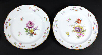 """Meissen Flowers & Insects ~ Salad/Dessert Plate(s) 8 1/4"""""""