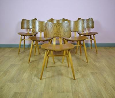 Set of 6 Mid Century Ercol Elm Butterfly Dining Chairs with Superb Grains 1950s
