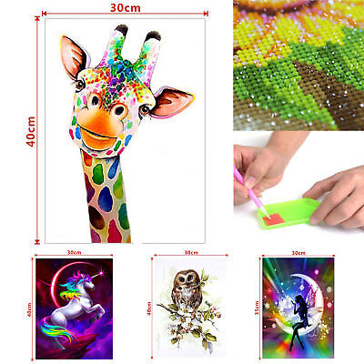 DIY 5D Diamond Embroidery Painting Cross Stitch Painting Home Decor Craft AU