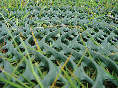 Driveway Grass Protection Mesh Car Parking 2x20M Heavy Duty Protection + 150Pins