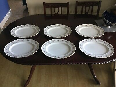Dauville Gold Dinner Plate Divertimenti & Oval Dinner Plates Uk - Best Plate 2018