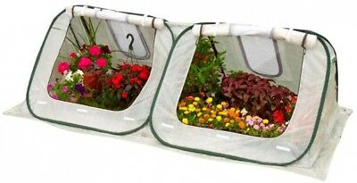 FlowerHouse Pop-Up Greenhouse Garden Plants 3H X 8W X 4D Ft. Portable FHSH200