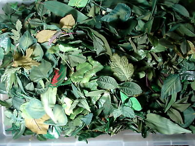 Huge 1 pound lot of loose silk flowers all leaves foliage greenery huge 1 pound lot of loose silk flowers all leaves foliage greenery 40 mightylinksfo