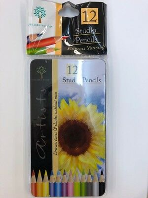 12 Studio Colouring Artist Pencils In Tin Drawing Sketch Tone Shades Art Set