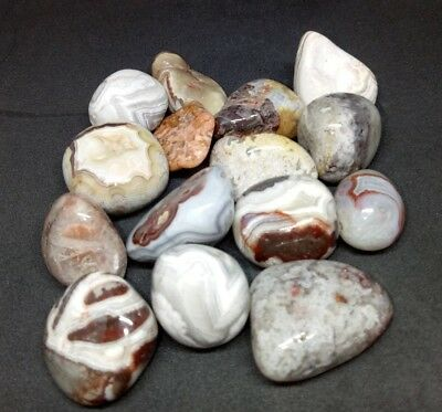 Red Crazy Lace Agate Tumbled Stone (1) - Free Postage
