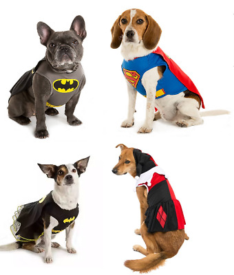 Genuine DC Comics Dog Superhero & Villain Character Costume Fancy Dress Outfit
