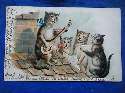 CAT w/LUTE & 3 CATS SINGING ON ROOF - SCARCE 1903 EMBOSSED POSTCARD!