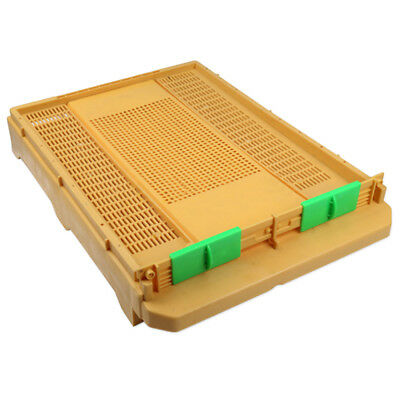 Plastic Beehive Bee Hive Base Beekeeping Equipment
