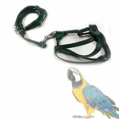 Pet Bird Harness and Leash Aviator Parrot Foot Adjustable Soft Easy And Safe EU