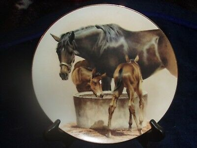 American Artists Water Trough Fred Stone 1992 Horse Plate #6750 MIB w COA 9.5""