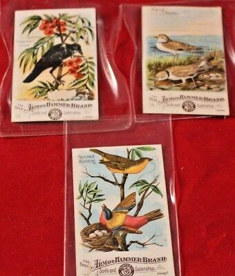 Vintage Advertising Cards The Great Arm & Hammer Brand Bird Cards As Pictured