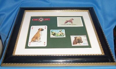 Unique Boxer Dog Framed Picture 10 x 12 Variety Stamps Playing Card Cigar Band