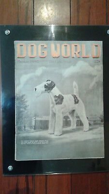 Vintage Dog World Magazine March 1940 Wirehaired Fox Terrier Cover