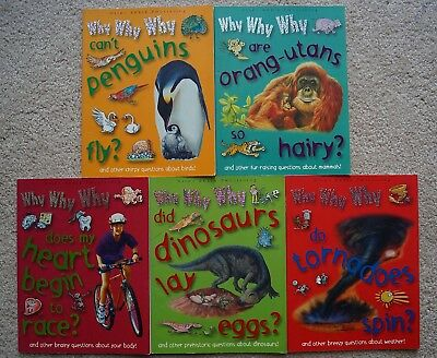 LOT 5 WHY WHY WHY question books Miles Kelly penguin orangutan dinosaur tornado+