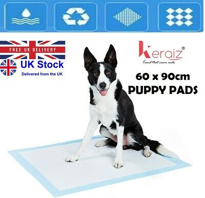 Keraiz Puppy Toilet Training Pee Wee Pet Mats, Large, Blue, 60x60cm
