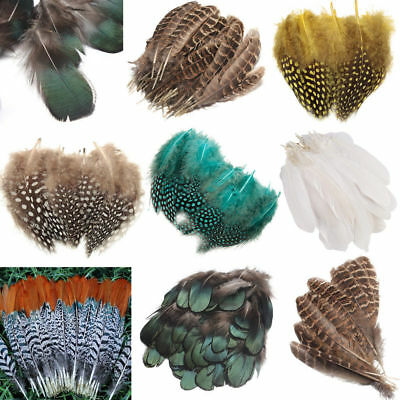 10-100Pcs Beautiful 4.5-10CM Pheasant Tail & Peacock Feathers DIY Craft Tool