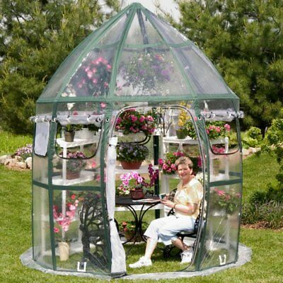 FlowerHouse Conservatory 8.67 x 8.67-Foot Portable Greenhouse