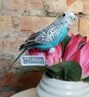 Faux Parakeet Budgie Bird Fake Replica Looks Real Blue NWT  8""