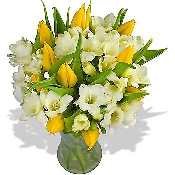 Mellow Yellow Bouquet - A luscious arrangement of Yellow Tulips and fragrant Whi