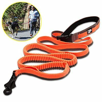 Dog Lead Hands Free Pet Leash Bungee Nylon Strong Rope with Adjustable Control H