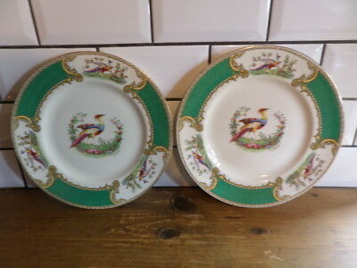 """Chelsea Bird Myott Two Cabinet Plates Made In England 2355 9 """" Made In England"""