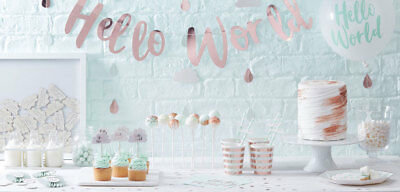 Hello World Rose Gold Mint Baby Shower Gender Reveal Party Decorations Tableware
