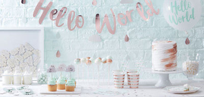 Rose Gold Mint Baby Shower Gender Reveal Party Supplies Decorations Tableware
